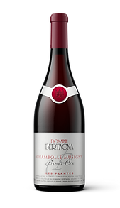 Chambolle Musigny Premier Cru Les Plantes Domaine Bertagna Red Wine Vin Rouge Pinot Noir Burgundy Bourgogne