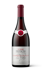 Chambolle Musigny Village Domaine Bertagna Red Wine Vin Rouge Pinot Noir Burgundy Bourgogne