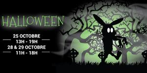 Un lapin zombie se promène dans une sombre forêt.
