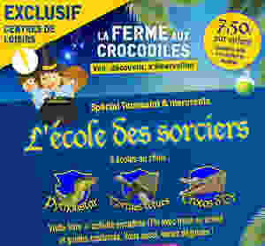 Trois petits sorciers devant un chaudron magique. Un python, une tortue et un crocodile représentent les 3 écoles des sorciers.