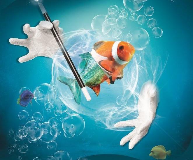 Des gants de magicien,une baguette magique, un poisson dans des bulles