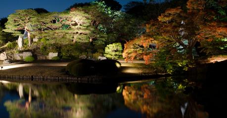 jardin_paysage_sud_estjpgjpg