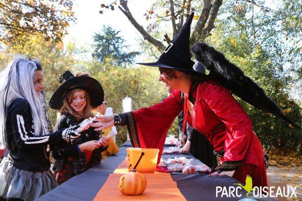 Des bonbons sont distribués à des enfants déguisés en sorcières