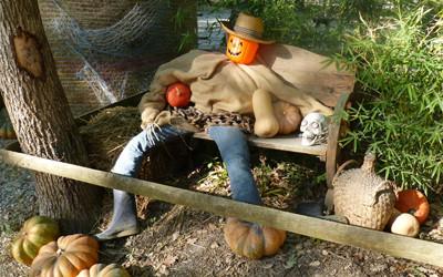 Un personnage citrouille assis sur un banc d'Anima Parc