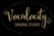 VOCALOCITY LOGO-01.png