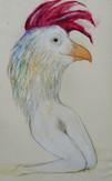 Cock Lady