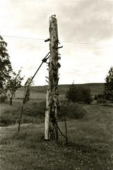 Nail Fetish Totem Steele Road, Roxboroughshire