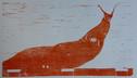 Chromium Orange Slug