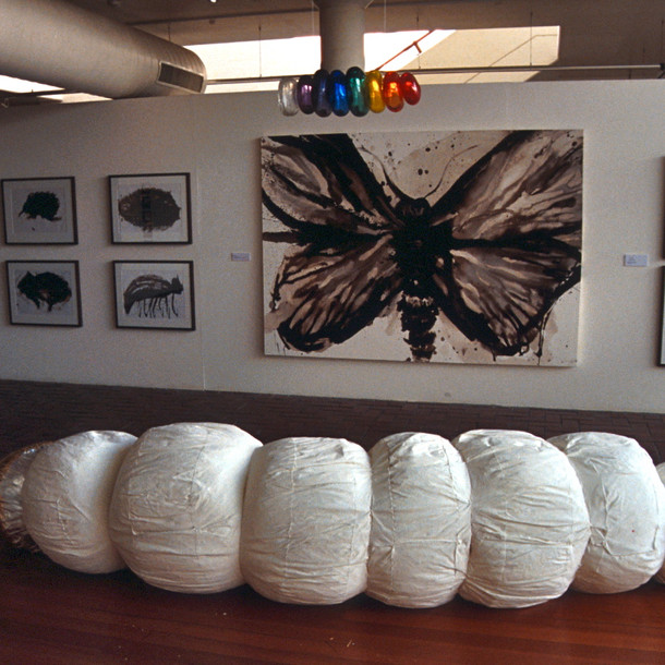 Grub and Moth, Exhibition Canberra School of Art