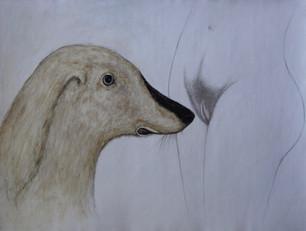 Animals caricature the human predicament