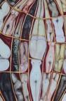Mundane Egg detail