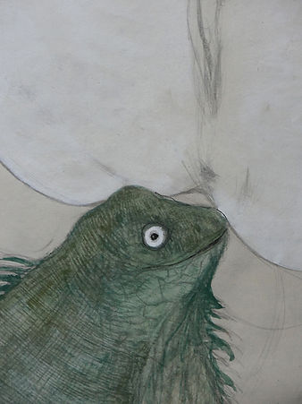 iguana -s.jpg