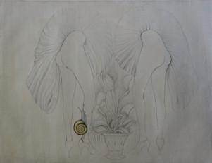Graphic symbol of the female gentitals