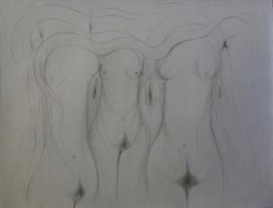 Sexual eternulité