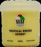 Tropical Breeze Sorbet