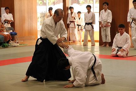 西葛西道場25周年、川島演武、2014.9.14.jpg