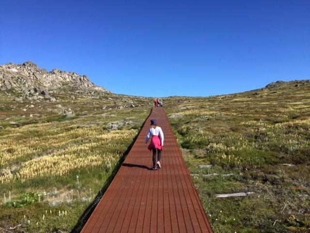 Climb Mount Kosciusko