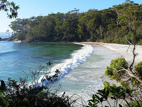 Dog friendly holidays in Jervis Bay