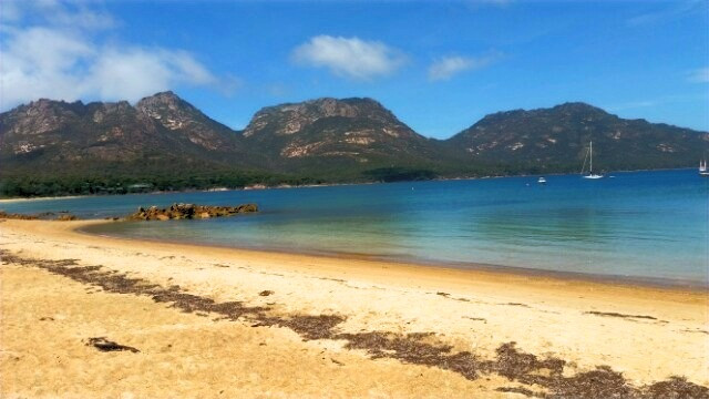 Richardson's Beach, Freycinet Tasmania