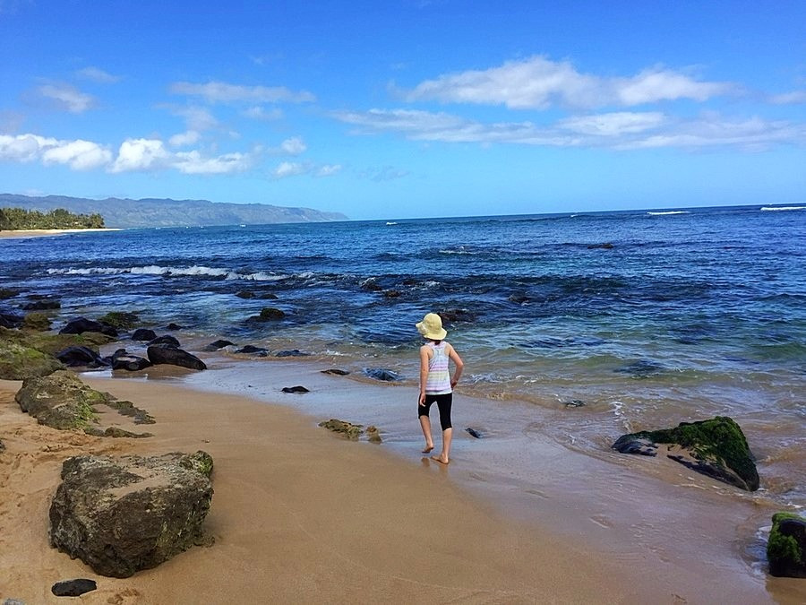 Lakianea Beach Oahu