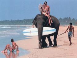 sri lanka surf in beach 4