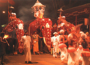 Kandy Perahara- Mid July to August each Year