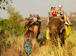 9day-elephant ride