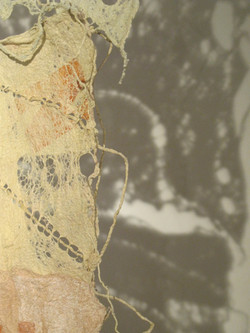 Bison Wallow I Detail 2