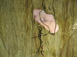 Detail, Bison Wallow I