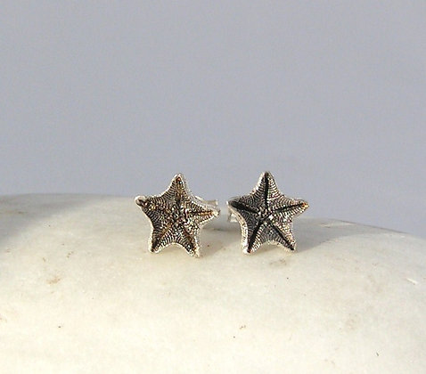 Starfish studs silver