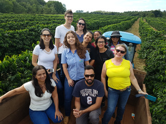 Alta Mogiana: um tour pelas lavouras de café