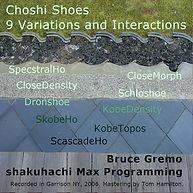 ChoshiShoes.jpg