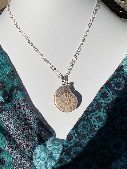 Fossil shell necklace