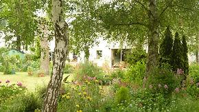 La Maison du Passant - chambres d'hotes et roulotte à chouze sur loire : seconde photo du jardin