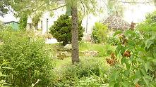 La Maison du Passant - chambres d'hotes et roulotte à chouze sur loire : photo du jardin