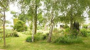 La Maison du Passant - chambres d'hotes et roulotte à chouze sur loire : troisieme photo du jardin
