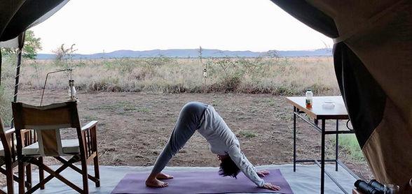 Sala Yoga | Yoga | Mindfulness | Strength | Balance | Posture | Yoga in Welwyn | Hertfordshire