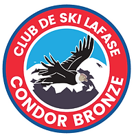 Condor Bronze Foto_edited.png