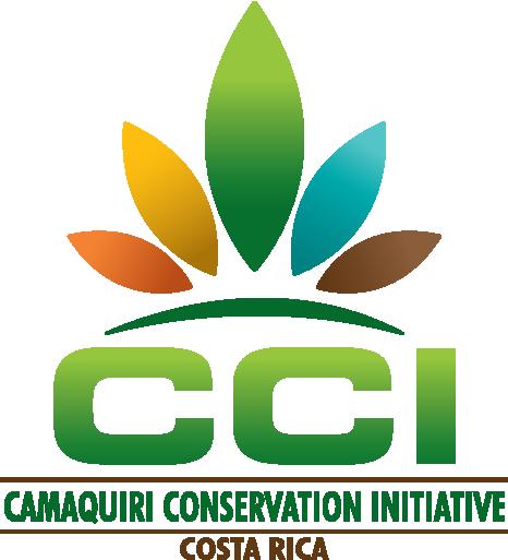 CCI-Logo-Final-01.png