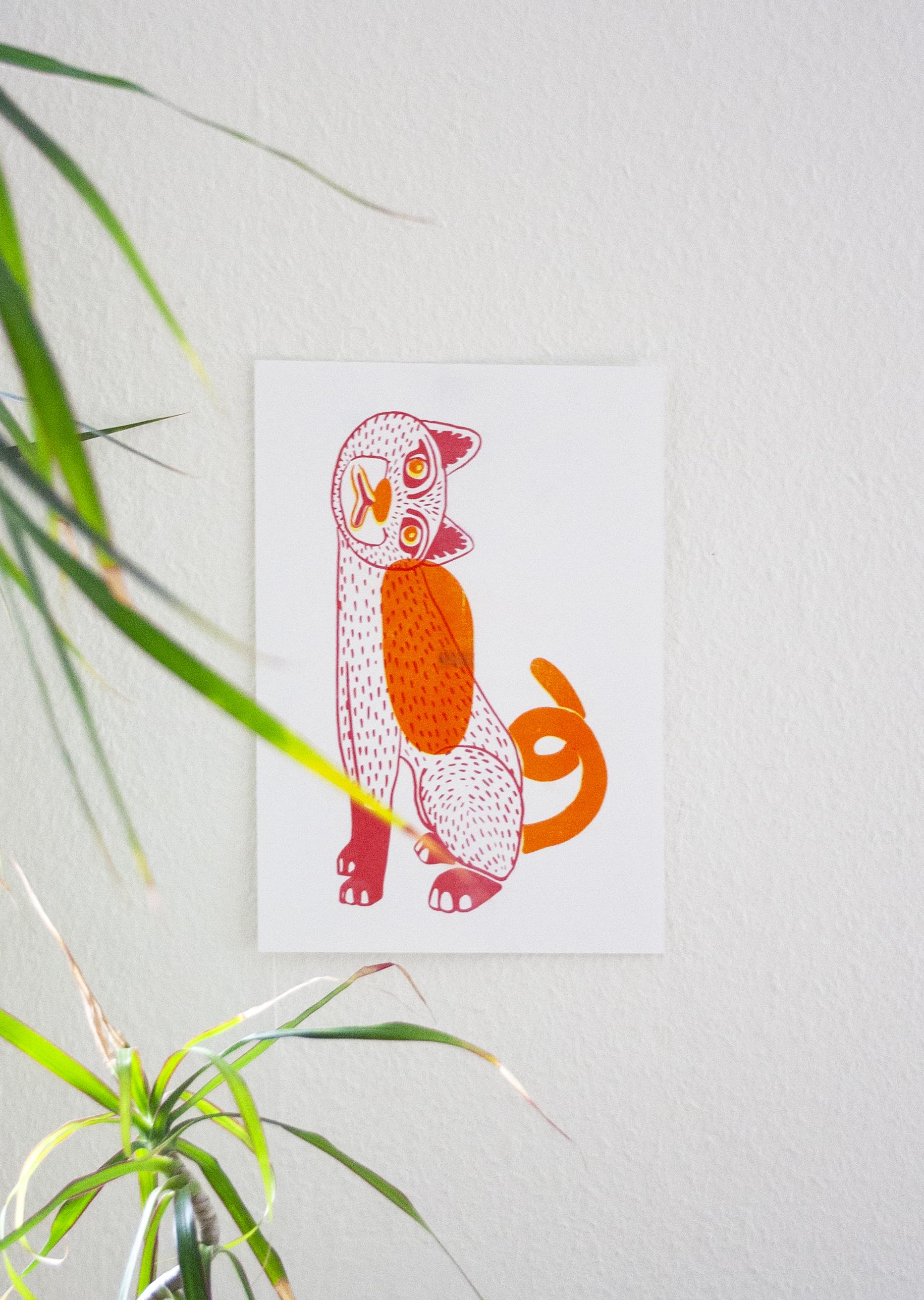 gatto rojo et plante