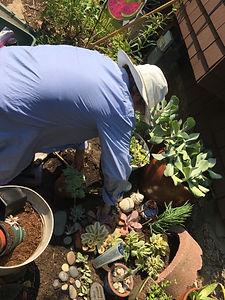 Planting Time.JPG