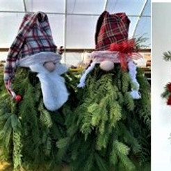 Holiday Evergreen Workshop, 11/11, 1pm