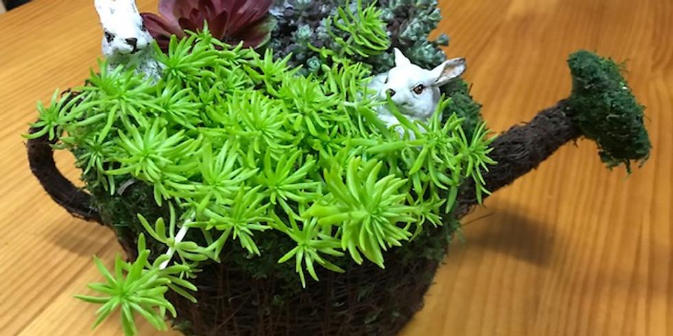 Succulent Bunny Planter Class