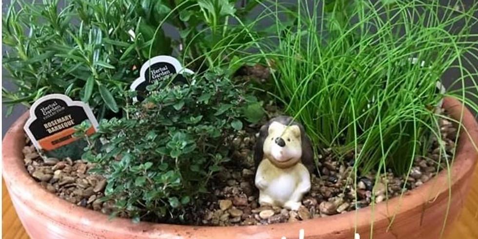 Pansy & Herb Garden Class