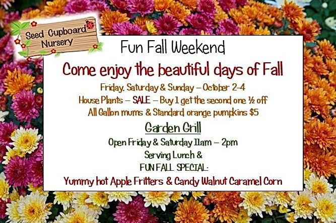 fun fall weekend.jpg