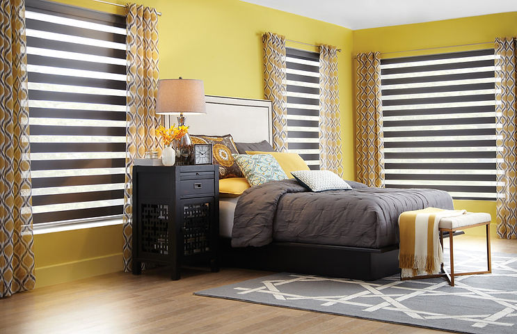 zebra shades - dular roller shades - zebra blinds