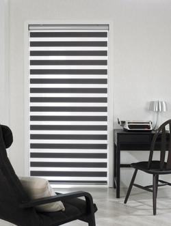 zebra shades