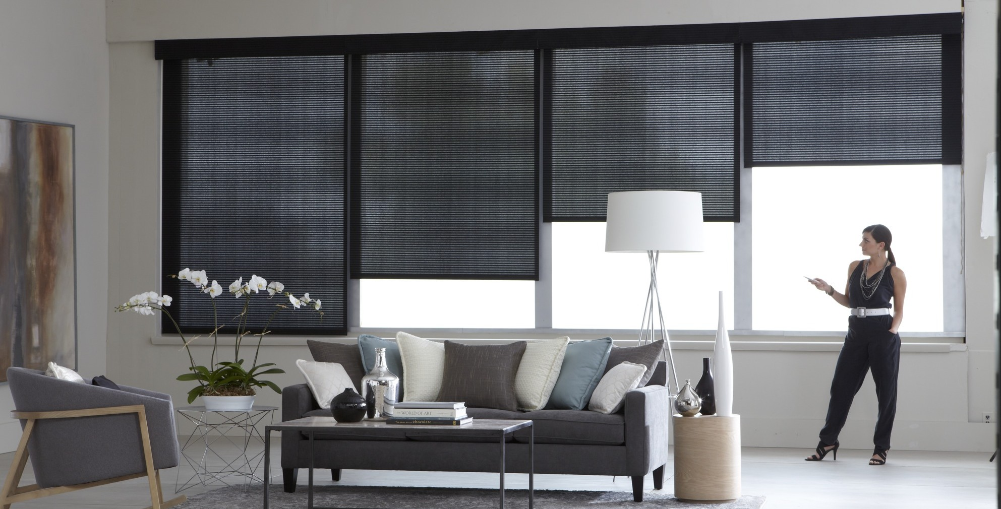 roller shades motorized
