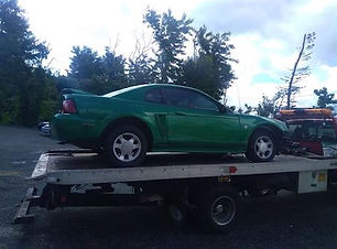 Mustang 2000 2.jpg