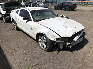 Mustang 5.0 2014.jpg